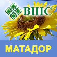 Семена подсолнечника Матадор ВНИС