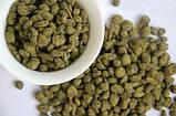 Китайський чай, Женьшень Улун 50 грам, фото 2