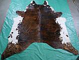 Аргентинські великі шкури корів, гарні незвичайні декоративні килими для будинку, фото 3