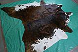 Аргентинські великі шкури корів, гарні незвичайні декоративні килими для будинку, фото 4