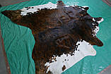 Аргентинские большие шкуры коров, красивые необычные декоративные ковры для дома, фото 4