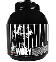 Universal Nutrition      ANIMAL   WHEY        4lb/ 1,814g.