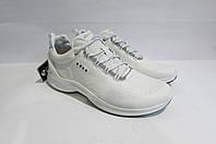 Мужские демисезонные кожаные кроссовки ECCO (8375) белые 3008А