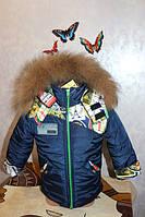 Зимний комбинезон + куртка для мальчика, термохоллофайбер, размеры 28, 30, 32, 34, натуральная опушка