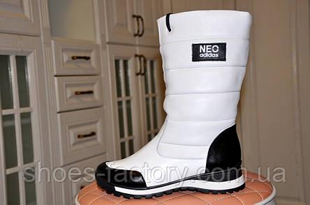 Сапоги женские Adidas Neo, зимние (натуральная кожа), фото 2