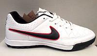 Кроссовки футбольные - футзалки - футбольные бутсы - обувь для мини футбола белые Nike NI0126