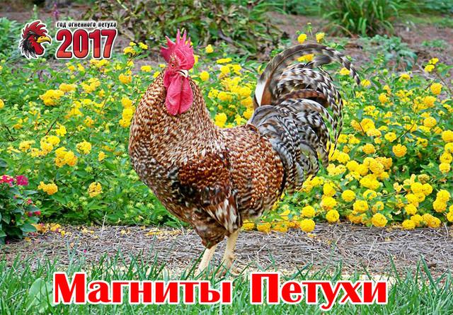 Сувениры петухи. Символ 2017 года
