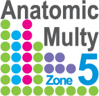 матрас с Многоуровневой инновационной системой пружин Anatomic Multy Zone