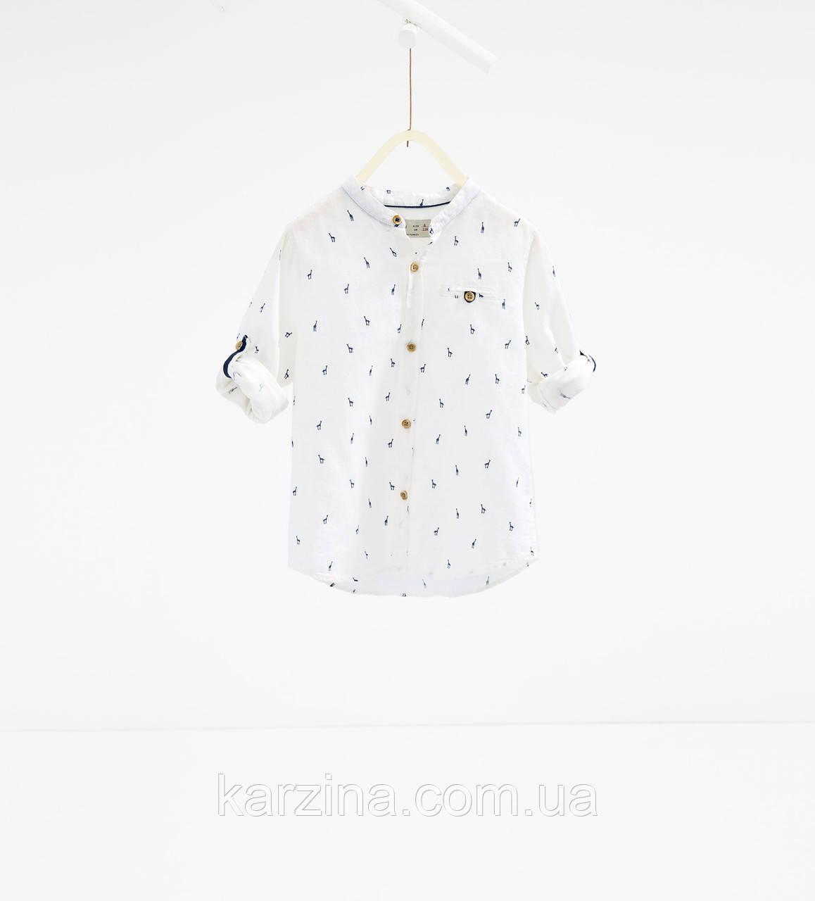 Рубашка Zara 13-14 лет.