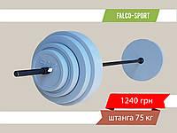 Штанга разборная 75 кг, гриф 25 мм