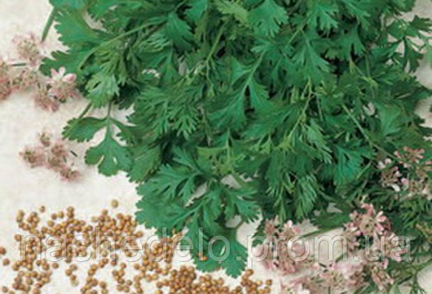 Кариби коріандр 1 кг. Тірас