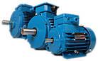 Однофазный электродвигатель АИРЕ 63 В2, АИРЕ63в2, АИРЕ 63В2 (0,37 кВт/3000 об/мин), фото 3