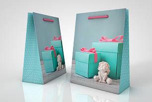 Подарункові пакети