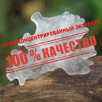 Трамелла фукусовидная (экстракт 30% β-глюканов), фото 1