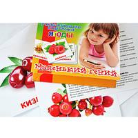 Набор детских карточек Маленький гений 951301 Фрукты