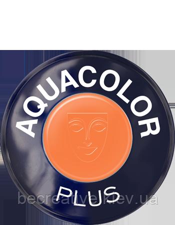 AQUACOLOR PLUS. Аква-грим в комплекте с активатором