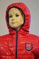 Яркая весенняя курточка для ребенка 3-6 лет (размер 98-116, силиконизированный синтепон) ТМ PoliN line