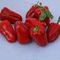 Семена сладкого перца Самурай F1 100 сем. Коуел (Sais)