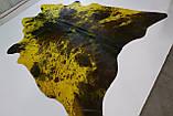 Шкура коровы желтая с коричневыми пятнами, фото 2