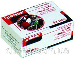 """Кнопки металлические цветные """"Norma"""" 50 шт."""