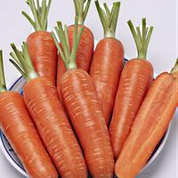 Проминенс морковь 100 000 сем Таки Сид