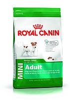 Royal Canin Mini Adult 8кг-корм для взрослых собак маленьких размеров (вес до 10 кг)