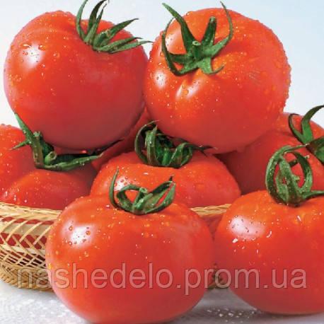 Семена томата Сентраль F1 100 сем. Nasko