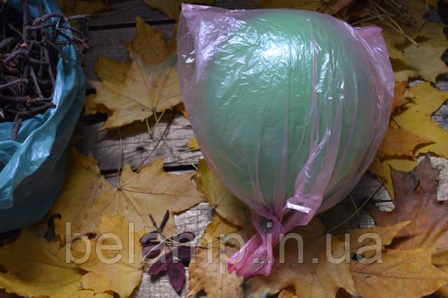 шарик и пакет