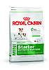 Royal Canin Mini Starter 3кг --корм для щенков до 2 месяцев, беременные и кормящие суки маленьких размеров