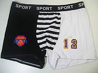 Трусы мужские боксеры, AURA.VIA, размер М, арт. FR-7618