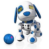 Zoomer Интерактивный щенок Спорт Zuppies Interactive Puppy Zuppy Love Sport