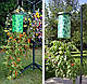 Приспособление для выращивания овощей(помидоры)  корнем вверх Topsy Turvy, проращиватель, фото 2