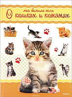 Моя большая книга о кошках и котятах Коэ Н