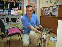 Ветеринарная клиника в г Черкассы -КАЧЕСТВЕННО И ДОСТУПНО тел 096-945-25-88