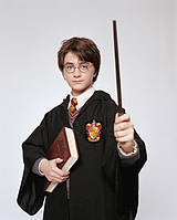 Костюм форма Гарри Поттера (герб Гриффиндора) 4 цвета