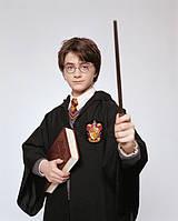Костюм форма Гарри Поттера (герб Гриффиндора) 4 цвета, фото 1