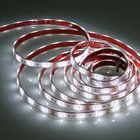 Светодиодная лента SMD 3528 (60 LED/m) IP20 Premium белый 6000K, фото 1