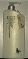 MINT SHAMPOO (шампунь для жирных волос)