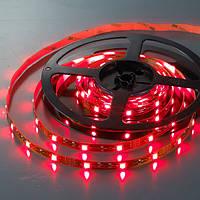 Светодиодная лента SMD 5050 (30 LED/m) IP20 Premium, фото 1