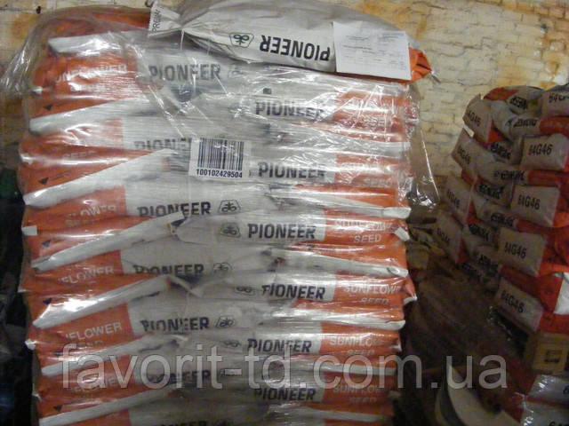 Семена кукурузы Пионер ПР39Г83 (PR39G83) ФАО 230