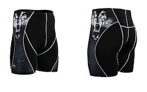 Компресійні шорти Fixgear P2S-B18, фото 2
