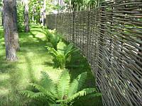 Декоративный Забор Тын плетеный из орешника высота под заказ