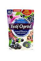 Фруктовый чай Twoj Ogrod со вкусом смородины, ежевики и граната, 40 пакетиков, фото 1