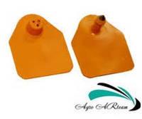 Ушная бирка для свиноматок и КРС, без номера,  4,5х5,0 см оранжевая (двойная), фото 1