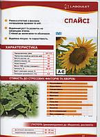 Семена подсолнечника Спайси Лабуле (Laboulet) евро-лайтинг