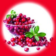 Клюква / Cranberry 10 мл, 0 мг/мл, 50PG - PUFF Жидкость для электронных сигарет (Заправка)