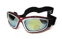 Очки для горного спорта Nice Face