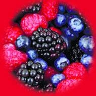 Лесные Ягоды / Wild Berries 10 мл, 0 мг/мл, 50PG - PUFF Жидкость для электронных сигарет (Заправка)