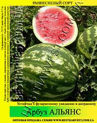Семена арбуза Альянс 10 кг (мешок)