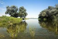 Особенно уловистые места на реках. Делимся опытом.
